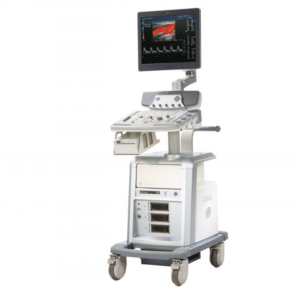 Ultrasonograf GE P6 używany
